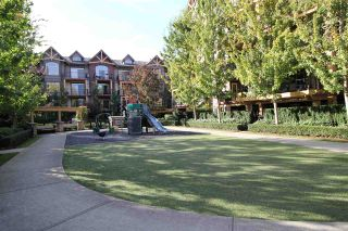 """Photo 12: 122 8288 207A Street in Langley: Willoughby Heights Condo for sale in """"YORKSON CREEK"""" : MLS®# R2212357"""