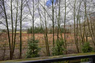 Photo 19: C216 20211 66 Avenue in Langley: Willoughby Heights Condo for sale : MLS®# R2532757