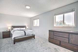 Photo 15: 288 Dunvegan Road in Edmonton: Zone 01 House for sale : MLS®# E4256564