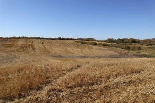 Photo 12: TWP 495 RR 232: Rural Leduc County Rural Land/Vacant Lot for sale : MLS®# E4216268