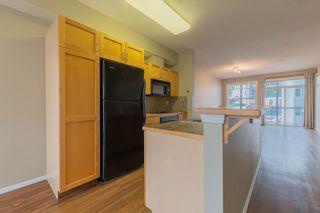 Photo 7: 308 9828 112 Street in Edmonton: Zone 12 Condo for sale : MLS®# E4263767