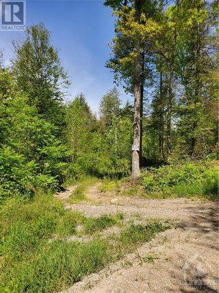 Photo 16: 2600 CLYDE LAKE ROAD in Lanark: Vacant Land for sale : MLS®# 1253879