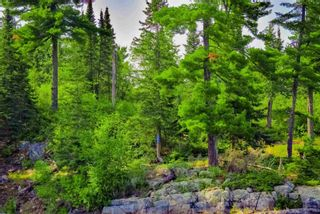 Photo 19: Lot 8 Five Point Island in South of Kenora: Vacant Land for sale : MLS®# TB212085