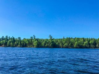 Photo 1: 5 Pulford's Island in Kenora: Vacant Land for sale : MLS®# TB210666