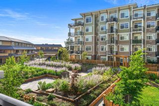 """Photo 28: 215 20696 EASTLEIGH Crescent in Langley: Langley City Condo for sale in """"The Georgia"""" : MLS®# R2598741"""