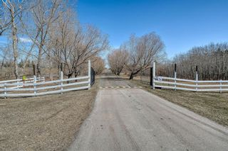 Photo 3: 116 Pine Creek Road: Rural Foothills County Detached for sale : MLS®# A1091741
