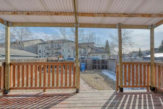 Photo 40: 375 Falshire Way NE in Calgary: Falconridge Detached for sale : MLS®# A1089444