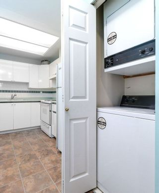 Photo 12: 107 2357 WHYTE Avenue in Port Coquitlam: Central Pt Coquitlam Condo for sale : MLS®# R2254202