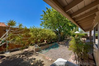 Photo 25: CARLSBAD SOUTH House for sale : 4 bedrooms : 7637 Cortina Ct in Carlsbad
