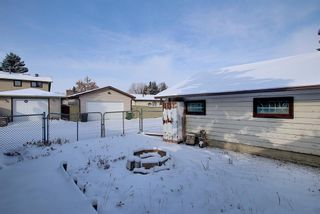 Photo 24: 4323 49 Street NE in Calgary: Whitehorn Detached for sale : MLS®# A1043612