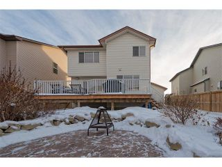 Photo 24: 289 West Lakeview Drive: Chestermere House for sale : MLS®# C4092730