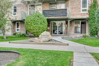 Photo 2: 201 1015 14 Avenue SW in Calgary: Beltline Apartment for sale : MLS®# A1074004