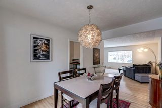 Photo 9: 2543 11 Avenue NW in Calgary: St Andrews Heights Detached for sale : MLS®# A1066144