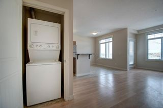 Photo 31: 304 132 1 Avenue NW: Airdrie Apartment for sale : MLS®# A1130474