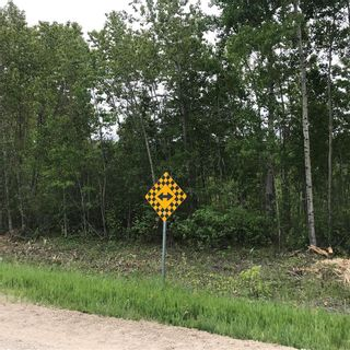 Photo 6: 0 84N Road in Brokenhead Rm: Vacant Land for sale : MLS®# 202001618