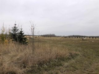 Photo 2: Twp Rd 583 Rge Rd 271: Rural Westlock County Rural Land/Vacant Lot for sale : MLS®# E4218422
