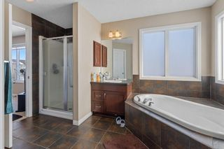 Photo 28: 101 COPPERSTONE Close SE in Calgary: Copperfield Detached for sale : MLS®# A1076956