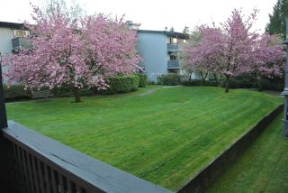 """Photo 9: 227 202 WESTHILL Place in Port Moody: College Park PM Condo for sale in """"WESTHILL PLACE"""" : MLS®# R2177245"""