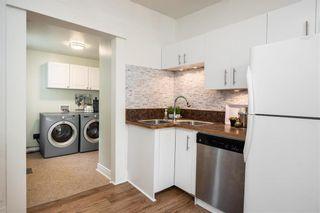 Photo 12: 48 Knappen Avenue in Winnipeg: Wolseley Residential for sale (5B)  : MLS®# 202117353