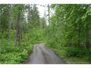 Photo 3: 1400 Southeast 20 Street in Salmon Arm: Hillcrest Vacant Land for sale (SE Salmon Arm)  : MLS®# 10112895