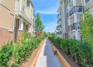 Photo 4: 316 20686 EASTLEIGH Crescent in Langley: Langley City Condo for sale : MLS®# R2540187