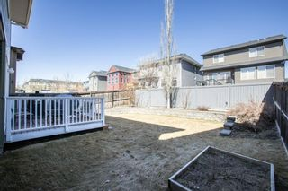 Photo 36: 104 Evanspark Circle NW in Calgary: Evanston Detached for sale : MLS®# A1094401