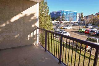 Photo 27: 241 10636 120 Street in Edmonton: Zone 08 Condo for sale : MLS®# E4265580
