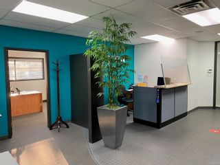 Photo 7: 227 1175 Cook St in Victoria: Vi Downtown Office for lease : MLS®# 859814