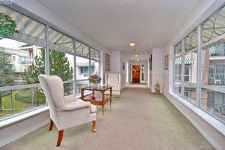 Photo 21: 303 3133 Tillicum Rd in VICTORIA: SW Tillicum Condo for sale (Saanich West)  : MLS®# 830076