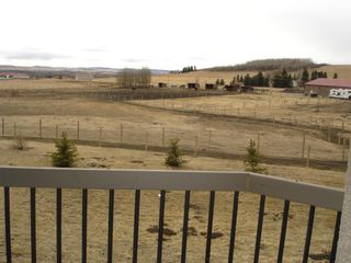 Photo 9: 322188 135 Street W: Rural Foothills County Detached for sale : MLS®# A1068193