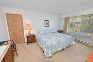 Photo 12: 3301 Argyle Pl in : SE Camosun House for sale (Saanich East)  : MLS®# 873581