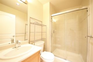 """Photo 16: 20 40750 TANTALUS Road in Squamish: Tantalus 1/2 Duplex for sale in """"MEIGHAN CREEK"""" : MLS®# R2305843"""