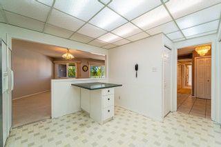 Photo 14: 409 14810 51 Avenue in Edmonton: Zone 14 Condo for sale : MLS®# E4263309