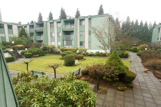 Photo 7: 206 9202 Horne Street in Lougheed Estates: Home for sale : MLS®# V802193