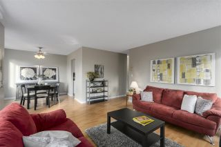 """Photo 1: 101 1720 SOUTHMERE Crescent in Surrey: Sunnyside Park Surrey Condo for sale in """"Spinnaker 1"""" (South Surrey White Rock)  : MLS®# R2122154"""