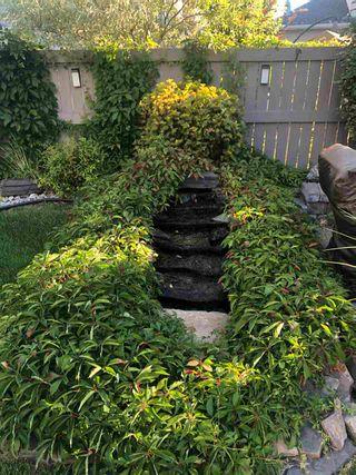 Photo 43: 220 HAWKSTONE Landing: Sherwood Park House for sale : MLS®# E4236966