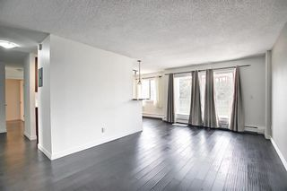 Photo 14: 303 4455A Greenview Drive NE in Calgary: Greenview Apartment for sale : MLS®# A1108022