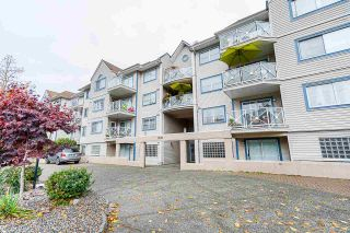 Photo 37: 319 12101 80 AVENUE in Surrey: Queen Mary Park Surrey Condo for sale : MLS®# R2516897