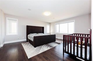 Photo 18: 723 ALBANY PL NW: Edmonton House for sale : MLS®# E4088726