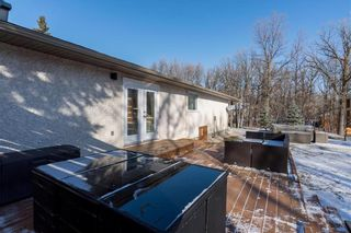 Photo 41: 56 Brentwood Avenue in Winnipeg: South St Vital Residential for sale (2M)  : MLS®# 202103614
