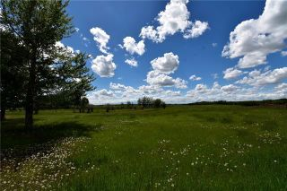 Photo 7: HWY 27 RANGE ROAD 272: Rural Mountain View County Land for sale : MLS®# C4302641