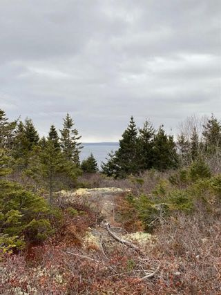 Photo 2: Lot 12 Tilley Point Road in Northwest Cove: 405-Lunenburg County Vacant Land for sale (South Shore)  : MLS®# 202100577