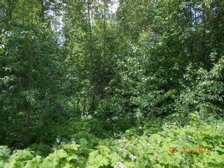 Photo 2: 247 Aspen Road in Anglemont: Land Only for sale : MLS®# 10066280