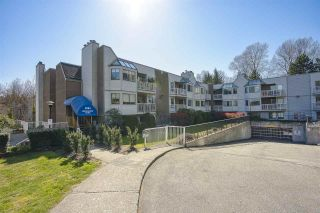 """Photo 1: 113 9584 MANCHESTER Drive in Burnaby: Cariboo Condo for sale in """"BROOKSIDE PARK"""" (Burnaby North)  : MLS®# R2449182"""