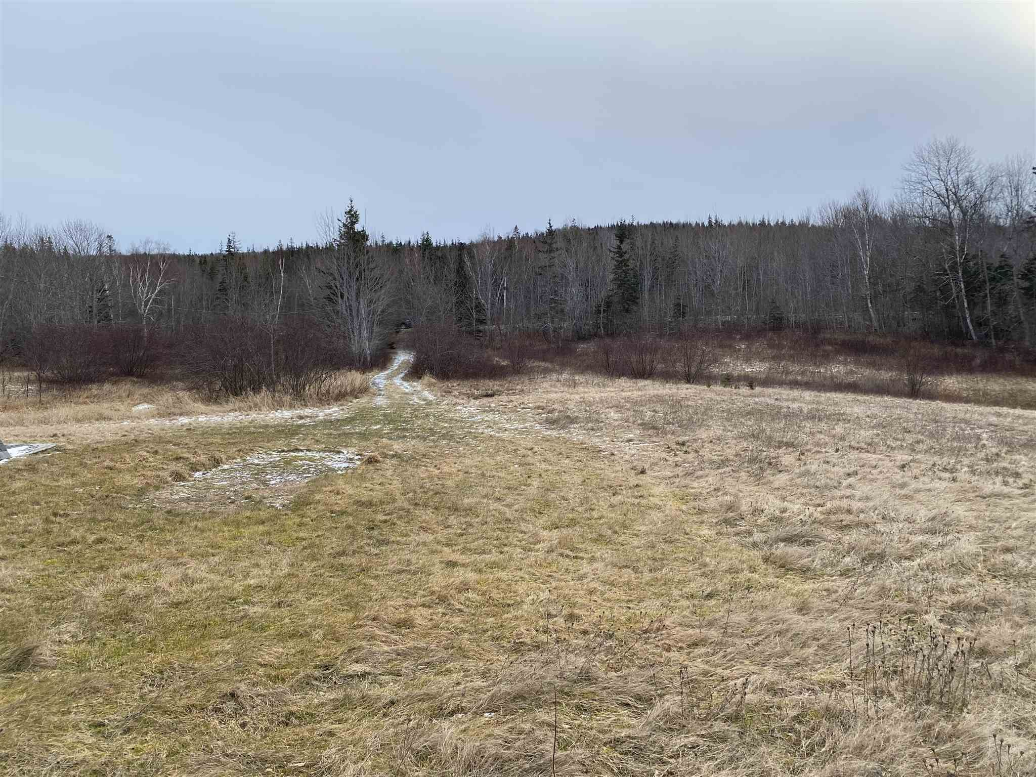 Photo 5: Photos: 8080 Marble Mountain Road in Malagawatch: 306-Inverness County / Inverness & Area Vacant Land for sale (Highland Region)  : MLS®# 202101037