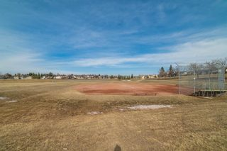 Photo 32: 4333 58 Street NE in Calgary: Temple Detached for sale : MLS®# A1092710