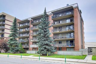 Photo 3: 204 1320 12 Avenue SW in Calgary: Beltline Apartment for sale : MLS®# A1128218
