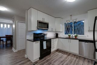 Photo 14: 164 Berwick Drive NW in Calgary: Beddington Heights Detached for sale : MLS®# A1095505