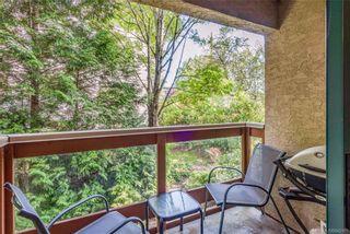 Photo 26: 203 1190 View St in Victoria: Vi Downtown Condo for sale : MLS®# 845109