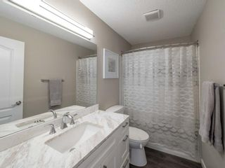 Photo 17: 237 Shawfield Road SW in Calgary: Shawnessy Detached for sale : MLS®# A1069121